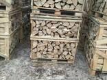 Groothandel Brennholz von Grab, Eiche /Дрова оптом, граб дуб - photo 6