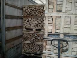 Groothandel Brennholz von Grab, Eiche /Дрова оптом, граб дуб - фото 3