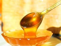 Honey - фото 1