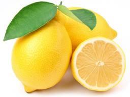 Лимоны ОПТОМ из Турции