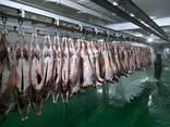 Мясо Баранина Говядина оптом - photo 5