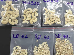 Quality raw cashew nuts from Denmark